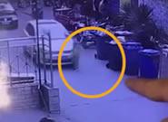 幼童忽然窜出 遭汽车碾压身亡