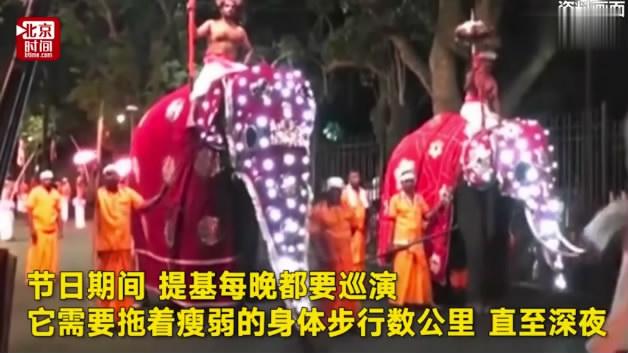 http://www.dibo-expo.com/yulemingxing/900119.html