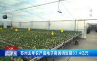 苏州去年农产品电子商务销售额33